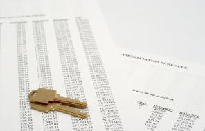 What is Amortization